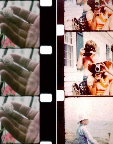 Window Flower and The Kennedy family on their holiday by Jonas Mekas