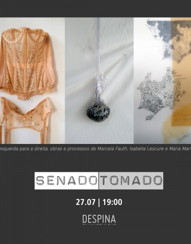 flyer_senado_meninas_jpg
